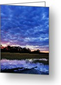 Digital Prints Greeting Cards - January Morning Greeting Card by Phill  Doherty