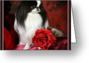 Gift Pyrography Greeting Cards - Japanese Chin and Rose Greeting Card by Kathleen Sepulveda