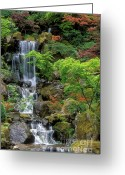 Foliage Greeting Cards - Japanese Garden Waterfall Greeting Card by Sandra Bronstein