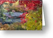 Japanese Maple Greeting Cards - Japanese Gardens Greeting Card by Idaho Scenic Images Linda Lantzy