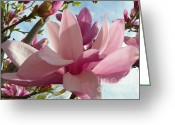 Magnolia Mixed Media Greeting Cards - Japanese Magnolia Tree - Macro Garden Flower Greeting Card by Photography Moments - Sandi