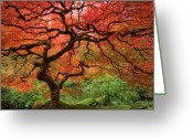 Red Greeting Cards - Japenese Garden, Portland Greeting Card by Jesse Estes