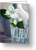 Watercolor By Irina Greeting Cards - Jasmine Greeting Card by Irina Sztukowski