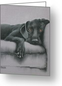 Animal Portrait Pastels Greeting Cards - Jasper Greeting Card by Cynthia House