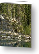 Minard Greeting Cards - Jasper Park Greeting Card by Vern Minard