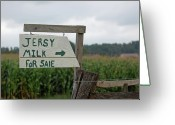 Amish Farms Greeting Cards - Jersey Milk For Sale Greeting Card by Joyce Huhra