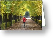 Jogging Greeting Cards - Jogging in the park Greeting Card by Erich Mangl