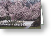 President Kennedy Greeting Cards - John F Kennedy Memorial in Spring Greeting Card by Tim Grams