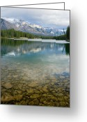 Best Sellers Greeting Cards - Johnson Lake Rocks Greeting Card by Adam Pender