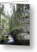 Johnston Greeting Cards - Johnston Canyon 3 - Banff National Park Greeting Card by Daniel Hagerman
