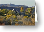 Mountain Ranges Greeting Cards - Joshua Tree National Park in California Greeting Card by Christine Till