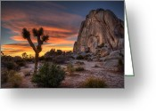 National  Parks Greeting Cards - Joshua Tree Sunset Greeting Card by Peter Tellone