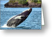 Whale Greeting Cards - Joy Greeting Card by David Wagner