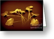 Lotus Leaves Greeting Cards - Joy Greeting Card by Susanne Van Hulst