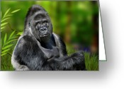 Primates Greeting Cards - Jumbo Greeting Card by Julie L Hoddinott