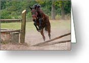 Jumping Greeting Cards - Jump Jump Greeting Card by Angel  Tarantella