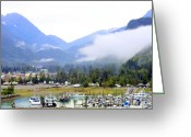 Skagway Greeting Cards - Juneau Seaport Greeting Card by Mindy Newman