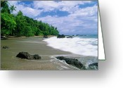 Crashing Waves Greeting Cards - Jungle at the Shore Greeting Card by George Oze