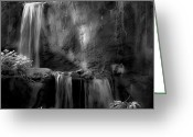 Compound Greeting Cards - Jungle Falls BW Greeting Card by DigiArt Diaries by Vicky Browning