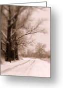 Path Greeting Cards - Just Around the Bend  Greeting Card by Carol Groenen