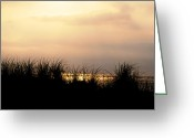 Dune Grass Greeting Cards - Just Over the Dune Greeting Card by Bill Cannon