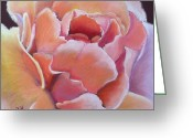 Flower. Petals Pastels Greeting Cards - Just Peachy Greeting Card by Helen Hammerman