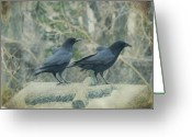 Passerines Greeting Cards - Just The Two Of Us Greeting Card by Gothicolors With Crows