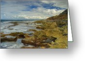 Point State Park Greeting Cards - Kaena Point 7860 Greeting Card by Michael Peychich