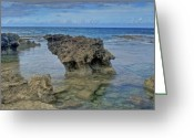 Point State Park Greeting Cards - Kaena Point  7868 Greeting Card by Michael Peychich