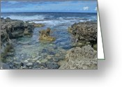 Point State Park Greeting Cards - Kaena Point 7872 Greeting Card by Michael Peychich