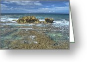 Point State Park Greeting Cards - Kaena Point  7898 Greeting Card by Michael Peychich