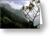 Beach Landscapes Greeting Cards - Kalalua Trail Kauai Greeting Card by Kathy Yates