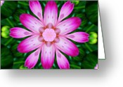 Pdx Greeting Cards - Kaleidoscope of a Dahlia Greeting Card by Cathie Tyler