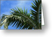 Island Cultural Art Greeting Cards - Kaniu Coconut Palm from the Gardens of Heaven Greeting Card by Sharon Mau