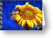 Colourful Mixed Media Greeting Cards - Kansas Greeting Card by Andee Photography