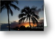 Surf Silhouette Greeting Cards - Kauai Hawaii Palm Tree Sunset Greeting Card by ELITE IMAGE photography By Chad McDermott
