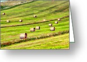 Green Pasture Greeting Cards - Keep on rolling Greeting Card by Sharon Lisa Clarke