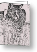 Kitty Digital Art Greeting Cards - Keeping Watch Greeting Card by David G Paul