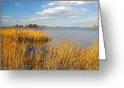 2d Greeting Cards - Kent Island Greeting Card by Brian Wallace