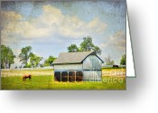 Prairie Sky Art Greeting Cards - Kentucky Pastures Greeting Card by Darren Fisher