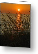 Florida Sunset Greeting Cards - Key West Sunset Greeting Card by Susanne Van Hulst