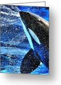 Whale Greeting Cards - Killer Splash Greeting Card by Emily Stauring