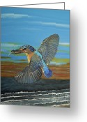 Eftalou Greeting Cards - Kingfisher of Eftalou Greeting Card by Eric Kempson