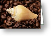 Dekoration Greeting Cards - Kitchen Pictures Coffee beans Snail Greeting Card by Falko Follert