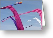 Black Kites Greeting Cards - Kites 3 Greeting Card by Elizabeth Sullivan