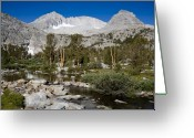 Mammoth. Greeting Cards - Kodak Moment Greeting Card by Kelley King