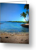 333 Greeting Cards - Kona Palms Greeting Card by Kelly Wade
