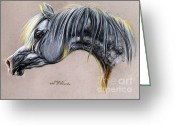 White White Horse Pastels Greeting Cards - Kordelas polish arabian horse soft pastel Greeting Card by Angel  Tarantella