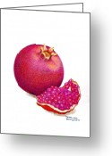 Health Drawings Greeting Cards - La Grenade Greeting Card by Sharon Blanchard