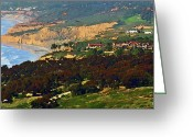 Beaches Greeting Cards - La Jolla Farms - Eucalyptus Grove Greeting Card by Russ Harris